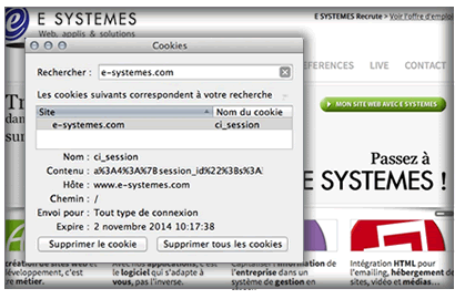 Le cookie de session sur le site E SYSTEMES