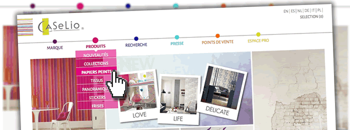 Création du site web Caselio pour Texdecor